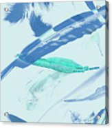 Blue Toned Artistic Feather Abstract Acrylic Print
