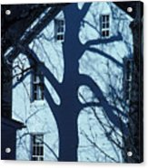 Blue Tree House Acrylic Print