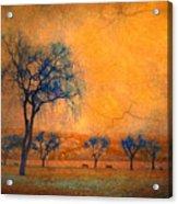 Blue Trees And Dreams Acrylic Print