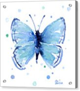 Blue Watercolor Butterfly Acrylic Print