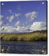 Blue Waters Of The Marsh Acrylic Print