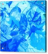 Blue Whisper Acrylic Print