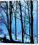 Blue Woods Acrylic Print