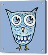 Blue Woot Owl Acrylic Print