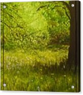 Bluebell Wood In Spring Triptych  Acrylic Print