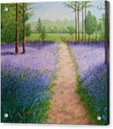 Bluebells With Butterflies Acrylic Print
