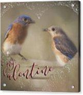 Bluebird Love Acrylic Print