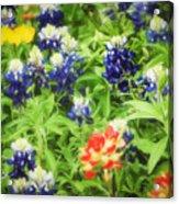 Bluebonnet Bouquet Acrylic Print