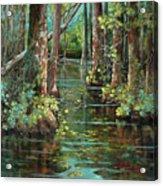 Bluebonnet Swamp Acrylic Print