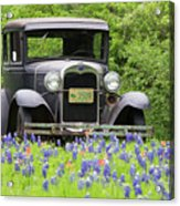 Bluebonnets And Fords Acrylic Print