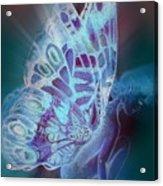Bluefly Acrylic Print