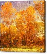 Gold Trees Acrylic Print
