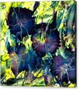 Blues Are Born Acrylic Print