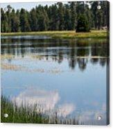 Bluff Lake Ca 4 Acrylic Print