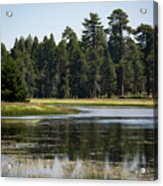 Bluff Lake Ca 6 Acrylic Print