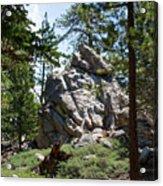 Bluff Lake Ca Boulders 1 Acrylic Print