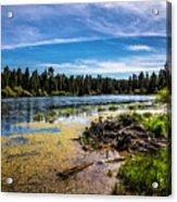 Bluff Lake  Acrylic Print