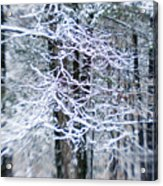 Blurred Shot Of Snow-covered Trees Acrylic Print