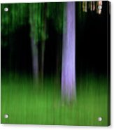 Blurred Trees Acrylic Print