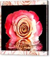 Blush Reflection Acrylic Print