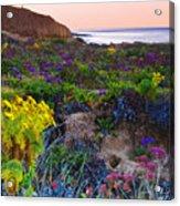 Blustery Sunrise Acrylic Print
