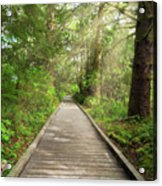 Boardwalk Along Hiking Trail At Fort Clatsop Acrylic Print