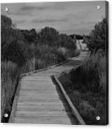 Boardwalk At Talbot Island Acrylic Print