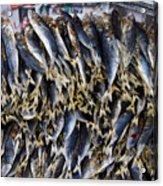 Bodboron Filipino Dried Fish Acrylic Print