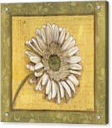 Bohemian Daisy 1 Acrylic Print