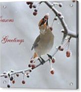 Bohemian Seasons Greetings Acrylic Print