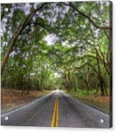 Bohicket Road Johns Island South Carolina Acrylic Print