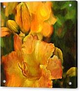 Bokah Lily Acrylic Print