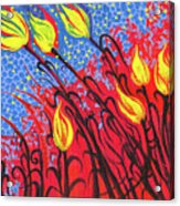 Bold Tulips Acrylic Print