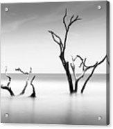 Boneyard Beach Viii Acrylic Print