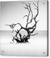 Boneyard Beach X Acrylic Print