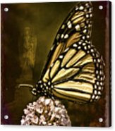 Boneyard Butterfly Acrylic Print
