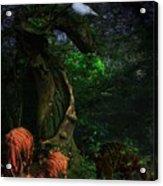Bongos In Our Dreams-whwf Acrylic Print
