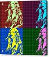 Bonnie Raitt Pop Art Poster Acrylic Print