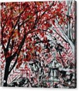 Bonsai And Penjing Museum 2 201732 Acrylic Print