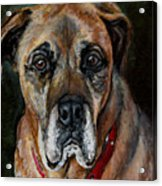 Boo For Dogtown Acrylic Print