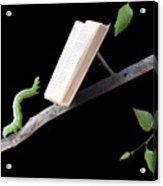 Book Worm Acrylic Print by Cindy Singleton