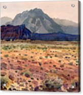 Bookshelf Mesa Acrylic Print