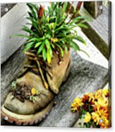 Booted Plant Acrylic Print
