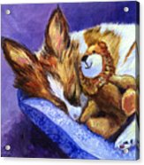 Bos And The Lion - Papillon Acrylic Print by Lyn Cook