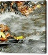 Boscobel Stream Acrylic Print