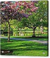 Boston Public Garden Pond Through The Cherry Blossom Spring Day Acrylic Print