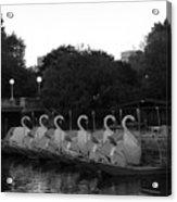 Boston Public Garden Swan Boats Acrylic Print