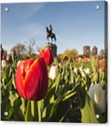 Boston Public Garden Tulips And George Washington Statue Acrylic Print