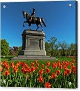 Boston Public Garden Tulips Boston Ma Acrylic Print