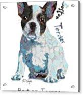 Boston Terrier Pop Art Acrylic Print